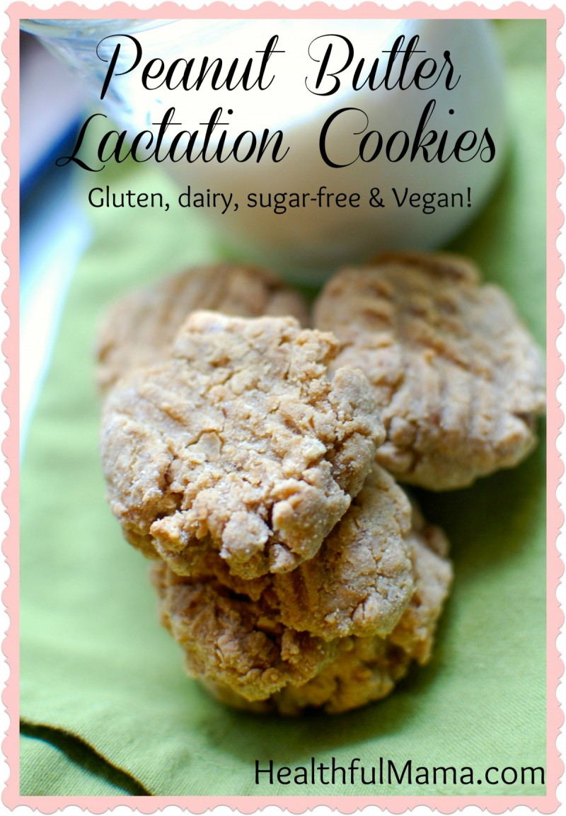 HealthfulMama LactationCookies