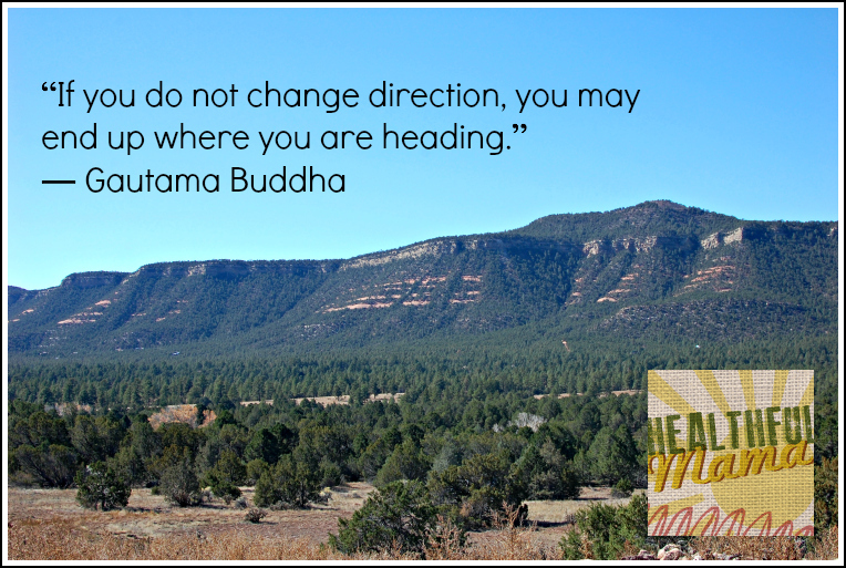 Healthful Mama Change Direction in Life